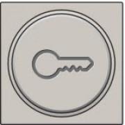 Afwerkingsset met doorschijnende ring met sleutelsymbool voor drukknop 6A met amberkleurige led met E10-lampvoet, Light grey