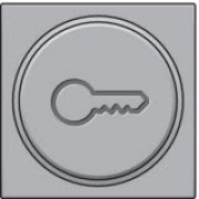 Afwerkingsset met doorschijnende ring met sleutelsymbool voor drukknop 6A met amberkleurige led met E10-lampvoet, Sterling