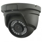 Dome camera 2MP voor binnen / buiten, dag/nacht, autofocus, anthraciet